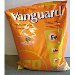 VANGUARD 5 KGS
