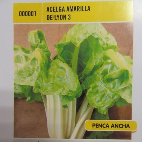 ACELGA AMARILLA DE LYON 3