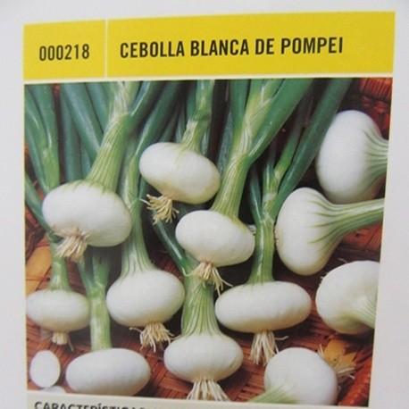 CEBOLLA BLANCA DE POMPEI