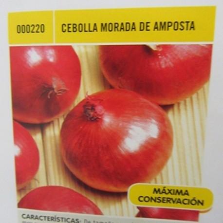 CEBOLLA MORADA DE AMPOSTA