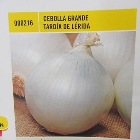 CEBOLLA GRANDE TARDÍA DE LÉRIDA