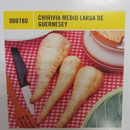 CHIRIVIA MEDIO LARGA DE GUERNESEY