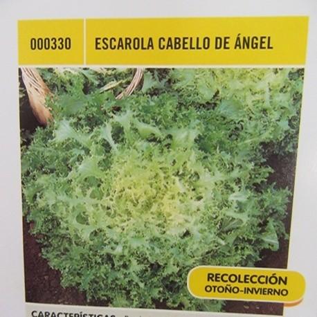 ESCAROLA CABELLO DE ÁNGEL