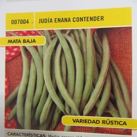 JUDÍA ENANA CONTENDER