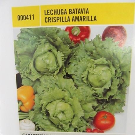 LECHUGA BATAVIA CRISPILLA AMARILLA