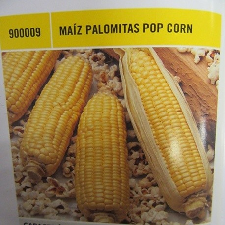 MAÍZ PALOMITAS POP CORN