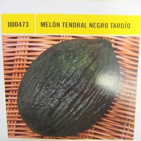 MELÓN TENDRAL NEGRO TARDÍO
