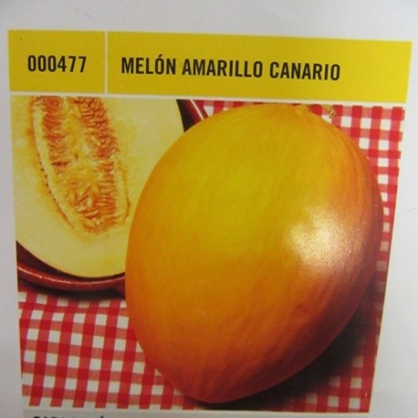 MELÓN AMARILLO CANARIO