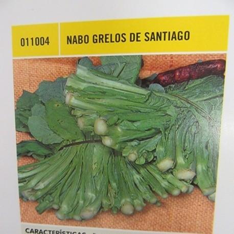 NABO GRELOS DE SANTIAGO
