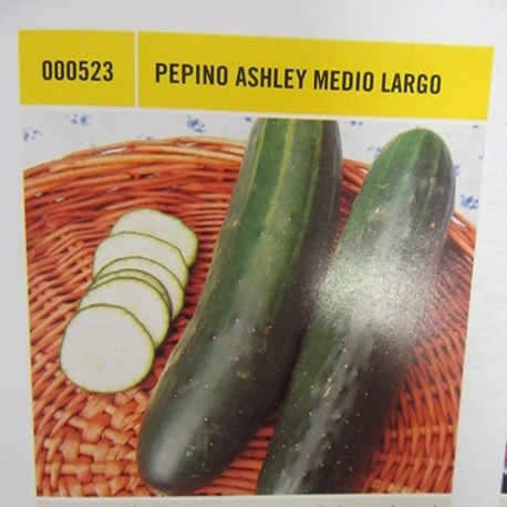 PEPINO ASHLEY MEDIO LARGO