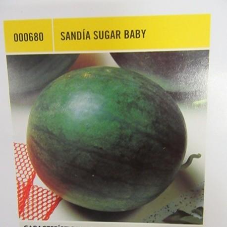 SANDÍA SUGAR BABY
