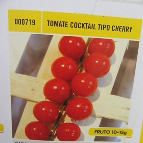 TOMATE COCKTAIL TIPO CHERRY