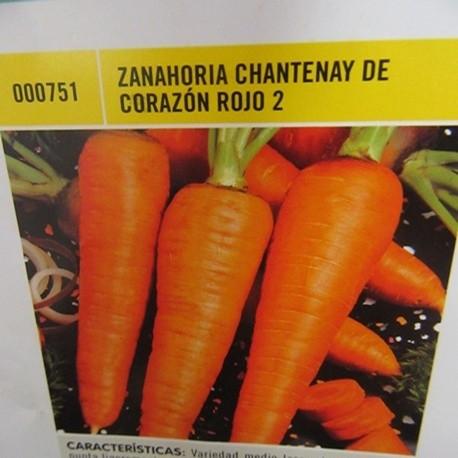 ZANAHORIA CHANTENAY DE CORAZÓN ROJO 2