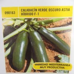 CALABACÍN VERDE OSCURO ASTIA HÍBRIDO F-1