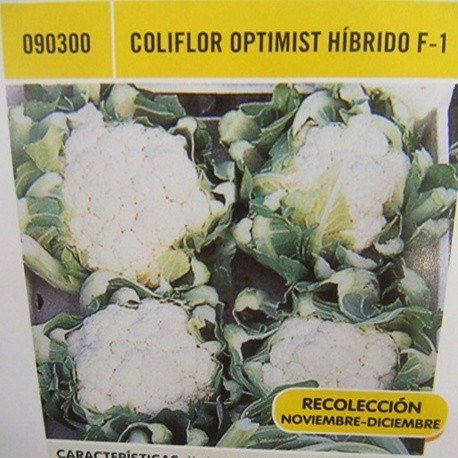 COLIFLOR OPTIMIST HÍBRIDO F-1