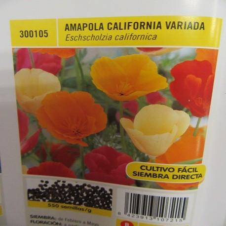 AMAPOLA CALIFORNIA VARIADA