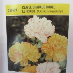 CLAVEL CHABAUD DOBLE ESTRIADO