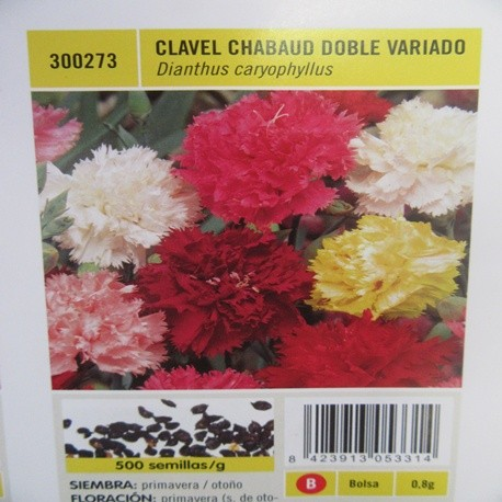CLAVEL CHABAUD DOBLE VARIADO