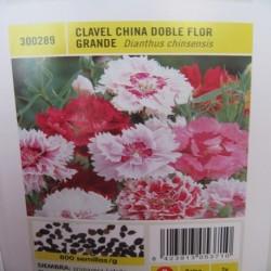 CLAVEL CHINA DOBLE FLOR GRANDE