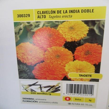 CLAVELÓN DE LA INDIA DOBLE ALTO
