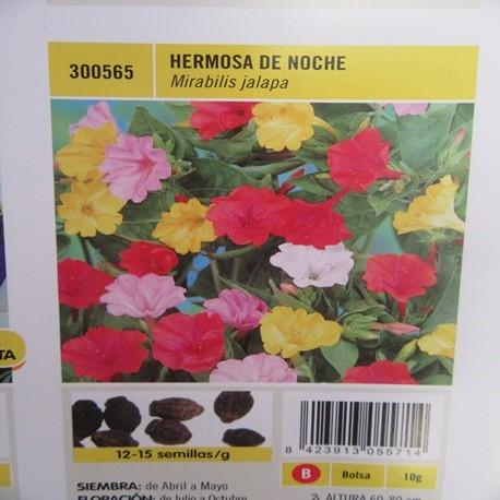 HERMOSA DE NOCHE