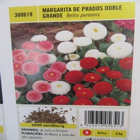 MARGARITA DE PRADOS DOBLE GRANDE