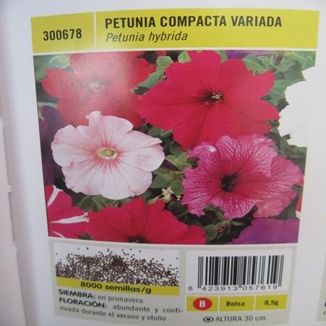PETUNIA COMPACTA VARIADA