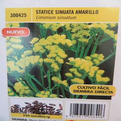 STATICE SINUATA AMARILLO