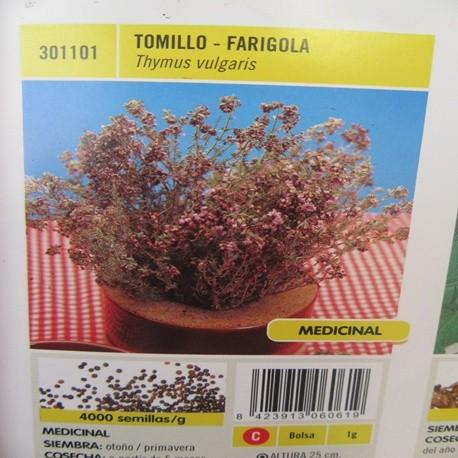 TOMILLO-FARIGOLA
