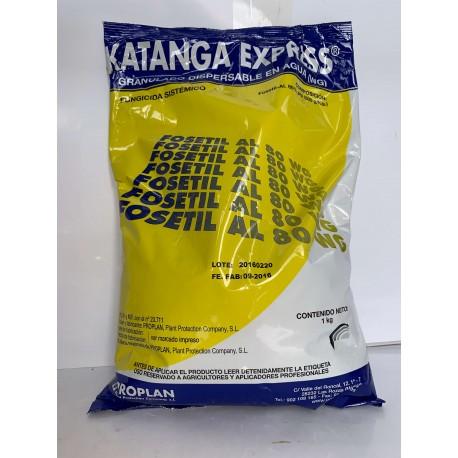 KATANGA EXPRESS