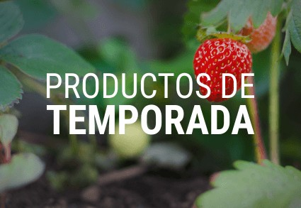 Productos de temporada